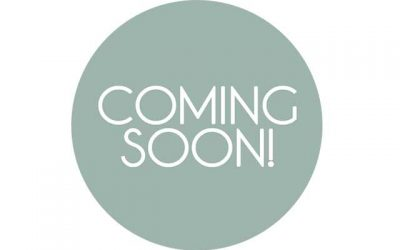 Coming Soon to Palladio:  SeaQuest Interactive Aquarium, Buckhorn BBQ, Sephora and Forever 21